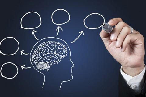 Bạn Thuận Bán Cầu Não Trái hay Não Phải ?